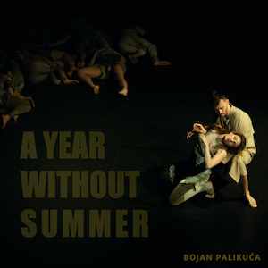 A Year Without Summer
